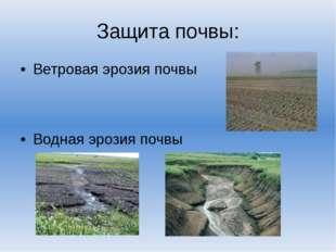 Защита почвы: Ветровая эрозия почвы Водная эрозия почвы