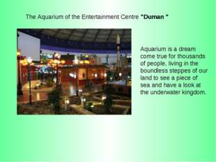 Aquarium is a dream come true for thousands of people, living in the boundles