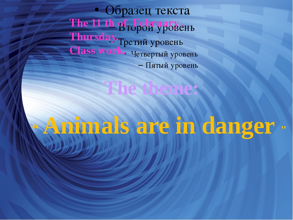 """ Animals are in danger "" The theme: The 11 th of February . Thursday. Class..."