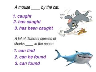 1. caught 2. has caught 3. has been caught A mouse____by the cat. A lot o