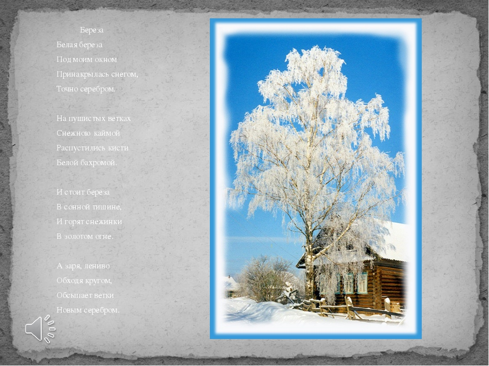 Береза Белая береза Под моим окном Принакрылась снегом, Точно серебром. На п...