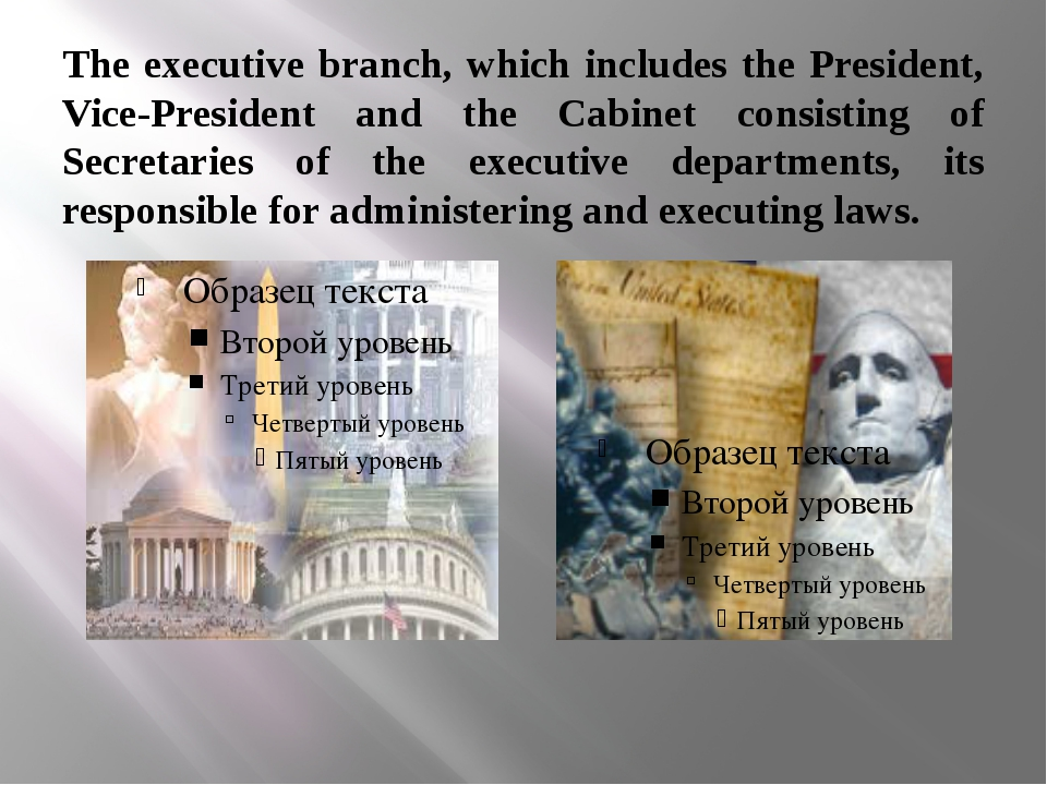The executive branch, which includes the President, Vice-President and the Ca...