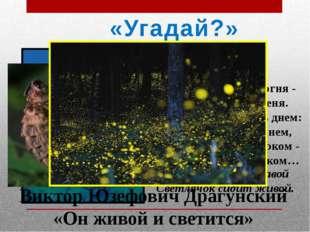 «Угадай?» Агния Барто Фонарик Мне не скучно без огня - Есть фонарик у меня.