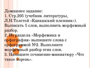 Домашнее задание: 1. Стр.205 (учебник литературы, Л.Н.Толстой «Кавказский пле