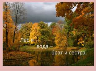 Лес и вода – брат и сестра.