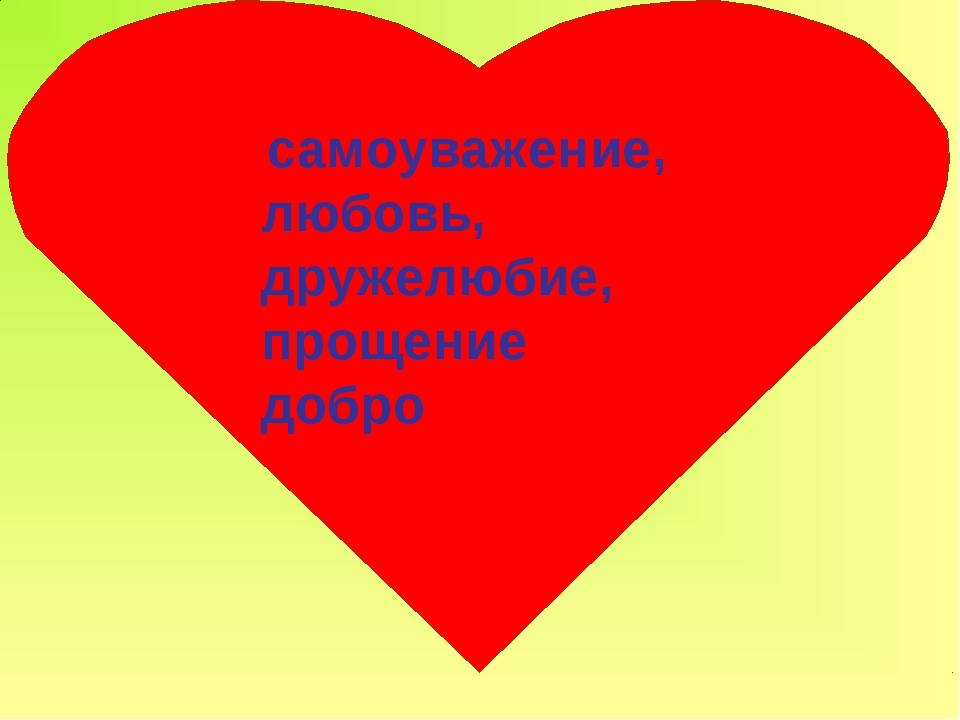 самоуважение, любовь, дружелюбие, прощение добро