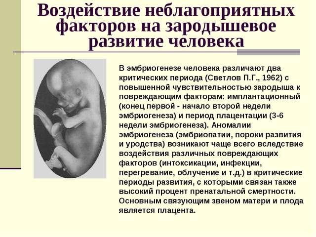 Воздействие неблагоприятных факторов на зародышевое развитие человека В эмбри...