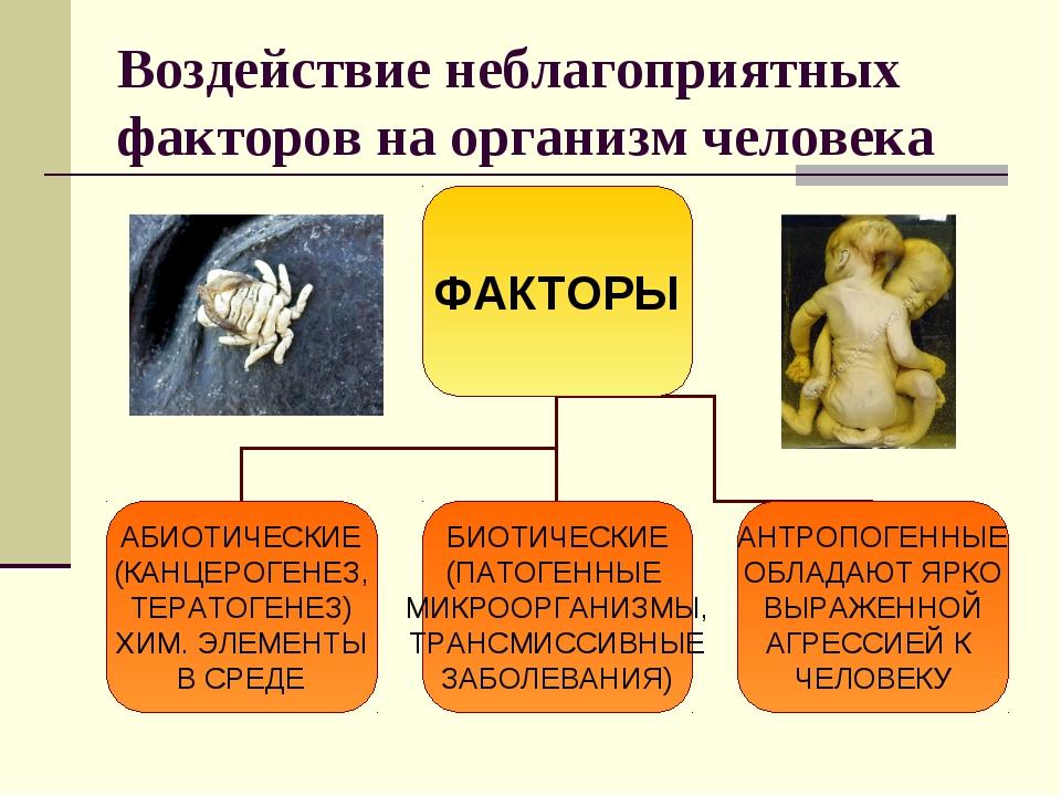 Воздействие неблагоприятных факторов на организм человека