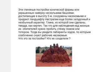 Эти глиняные постройки конической формы или украшенные наверху несколькими ба