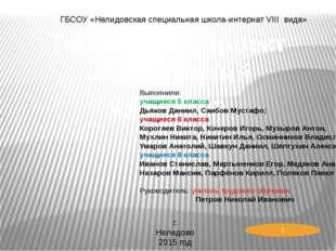 Творческий проект «Новогодний сувенир» ГБСОУ «Нелидовская специальная школа-и