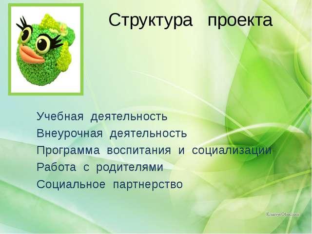 Структура проекта  Учебная деятельность Внеурочная деятельность Программа во...