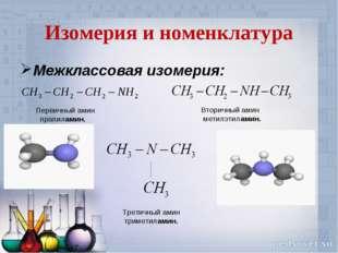 Изомерия и номенклатура Межклассовая изомерия: Первичный амин прапиламин. Вто