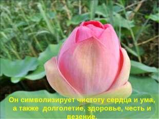 Он символизирует чистоту сердца и ума, а также долголетие, здоровье, честь и