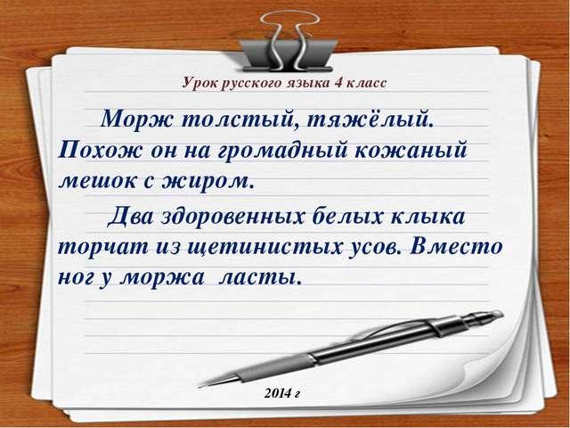 Урок русского языка 4 класс Морж толстый, тяжёлый. Похож он на громадный кожа...