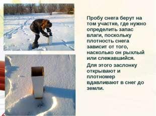 Пробу снега берут на том участке, где нужно определить запас влаги, поскольку
