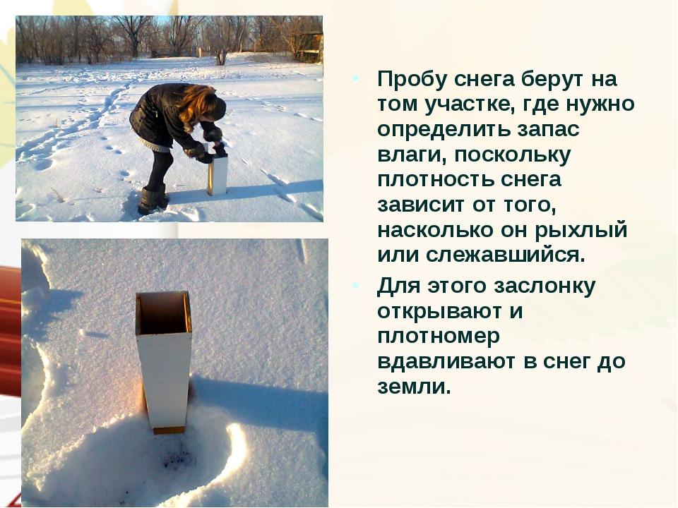 Пробу снега берут на том участке, где нужно определить запас влаги, поскольку...