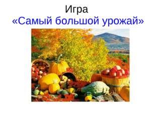 Игра «Самый большой урожай»