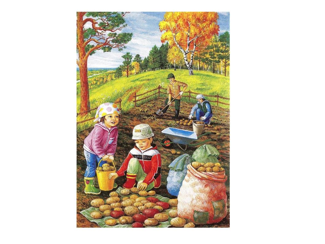 увидите картинки осень люди собирают урожай изменения фигуре кажутся