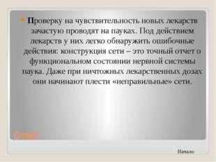Г. Салехард Автор: Янкин Юрий Николаевич Вопрос: Какой знаменитый итальянский