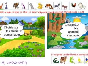 L`ours Le loup Le lapin Le lion Le chat Le chien L`élèphant Le cheval Le zèbr