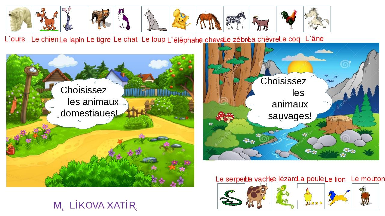 L`ours Le loup Le lapin Le lion Le chat Le chien L`élèphant Le cheval Le zèbr...