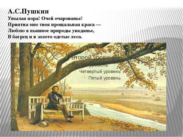 А.С.Пушкин Унылая пора! Очей очарованье! Приятна мне твоя прощальная краса —...