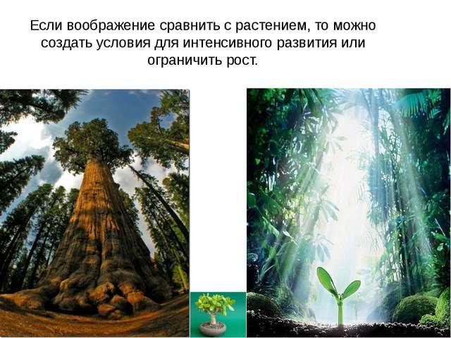 Если воображение сравнить с растением, то можно создать условия для интенсивн...