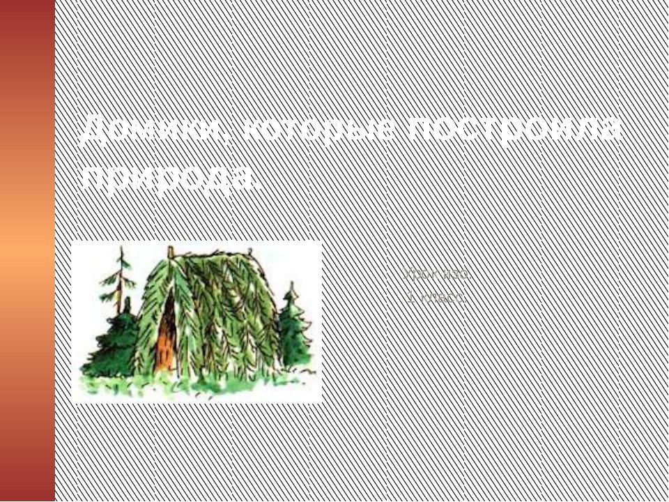 Домики, которые построила природа. Урок изо. 1 класс.