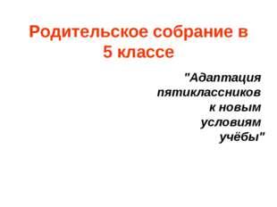 """Родительское собрание в 5 классе """"Адаптация пятиклассников к новым условиям у"""