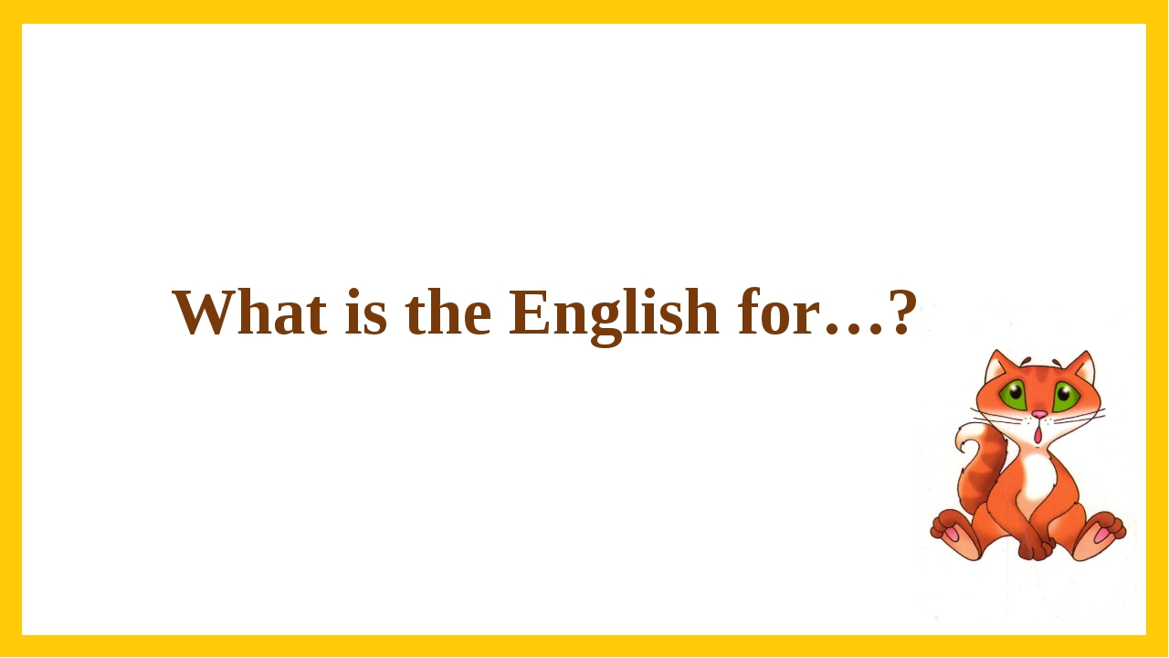 What is the English for…?