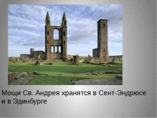 Шотландский чертополох Как гласит легенда, в 1010 году Шотландию пытались зах
