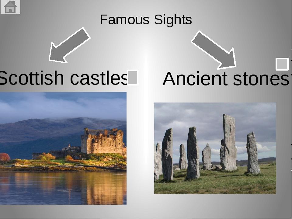 Хаггис(Haggis) — самое известное национальное шотландское блюдо из бараньих...