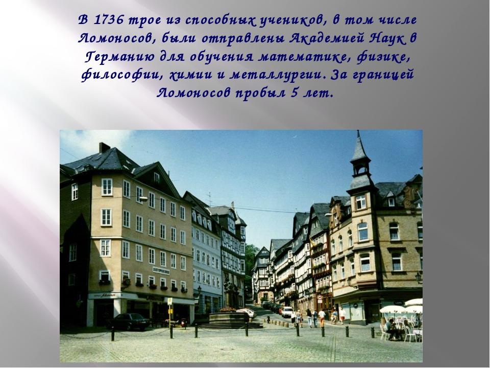 В 1736 трое из способных учеников, в том числе Ломоносов, были отправлены Ак...