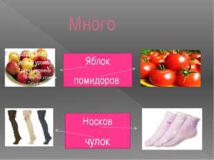 Много Яблок помидоров Носков чулок