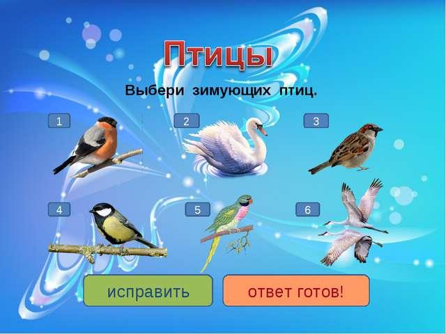 Выбери зимующих птиц. 1 4 3 5 2 6 исправить ответ готов!