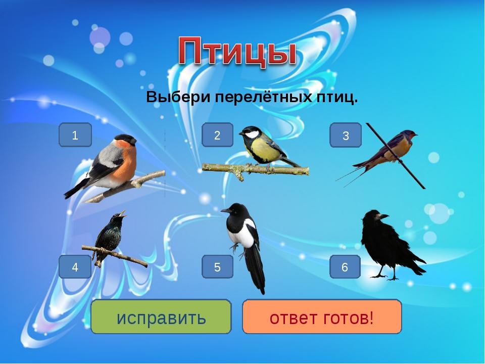 Выбери перелётных птиц. 6 4 3 5 2 1 исправить ответ готов!