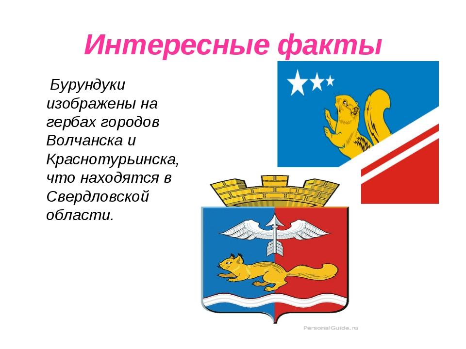 Интересные факты Бурундуки изображены на гербах городов Волчанска и Краснотур...