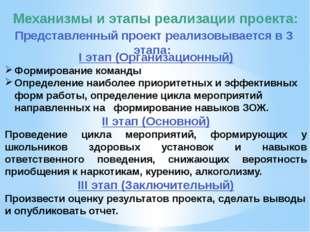Механизмы и этапы реализации проекта: I этап (Организационный) Формирование к