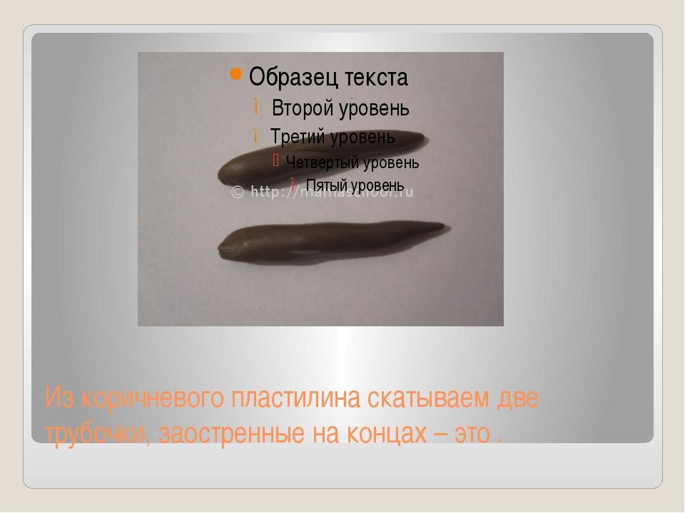 Из коричневого пластилина скатываем две трубочки, заостренные на концах – это .