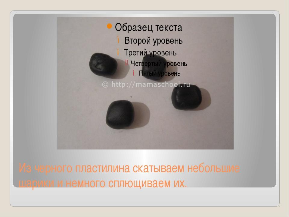 Из черного пластилина скатываем небольшие шарики и немного сплющиваем их.