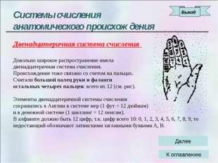 История возникновения и развития систем счисления Славянская системы счислени