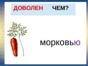 ЧЕМ? ДОВОЛЕН морковью