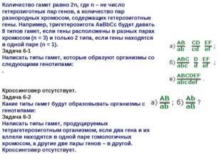 Количество гамет равно 2n, где n – не число гетерозиготных пар генов, а колич