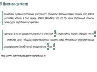 http://www.licey.net/bio/genetics/glava6_5