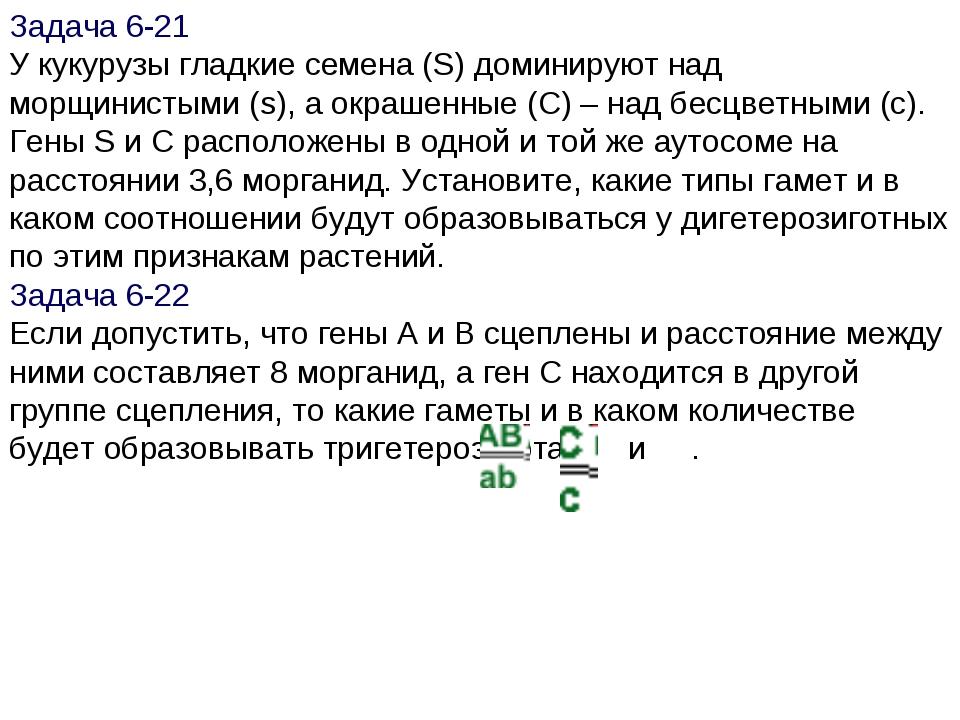 Задача 6-21 У кукурузы гладкие семена (S) доминируют над морщинистыми (s), а...