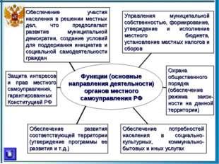 Функции (основные направления деятельности) органов местного самоуправления Р