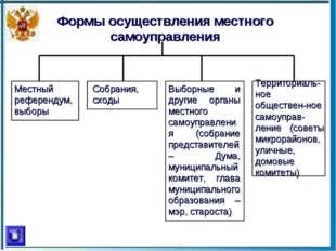 Формы осуществления местного самоуправления Местный референдум, выборы Собран