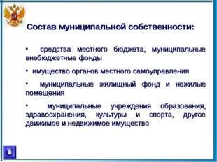 Состав муниципальной собственности: средства местного бюджета, муниципальные