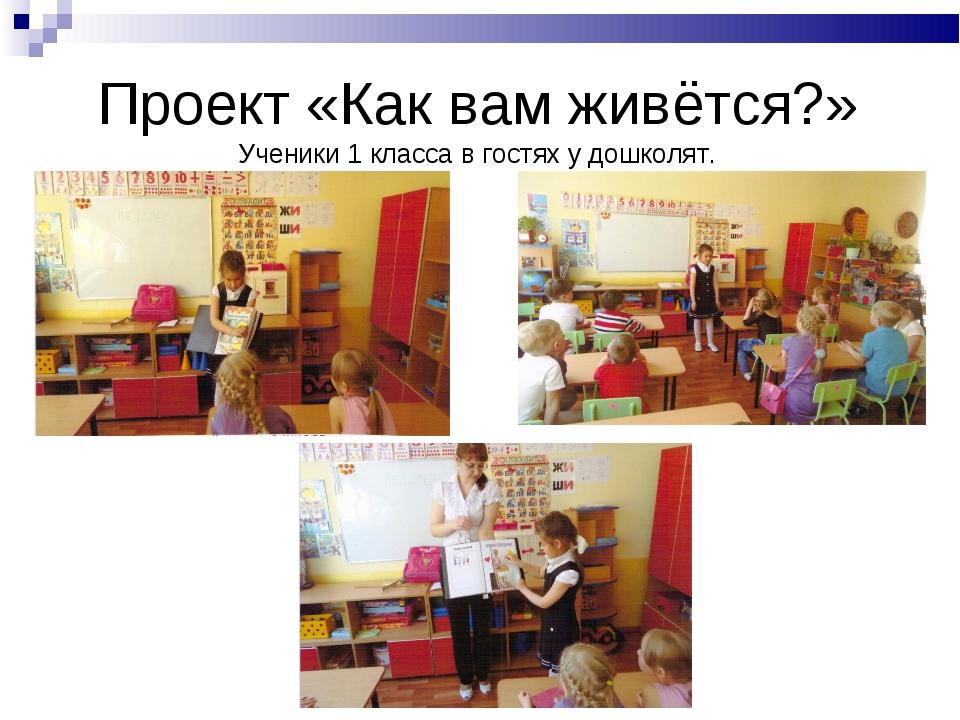 Проект «Как вам живётся?» Ученики 1 класса в гостях у дошколят.