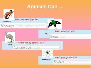 Animals Can … climb trees What can monkeys do? fly What can birds do? jump Wh